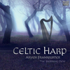 Vergrößerte Darstellung Cover: Celtic harp. Externe Website (neues Fenster)