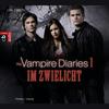 Vergrößerte Darstellung Cover: The vampire diaries - Im Zwielicht. Externe Website (neues Fenster)