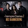 The vampire diaries -  Bei Dämmerung