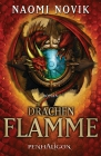 Vergrößerte Darstellung Cover: Drachenflamme. Externe Website (neues Fenster)