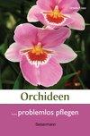 Orchideen problemlos pflegen