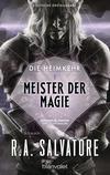 Vergrößerte Darstellung Cover: Die Heimkehr 1 - Meister der Magie. Externe Website (neues Fenster)