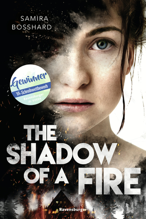 ¬The¬ shadow of a fire