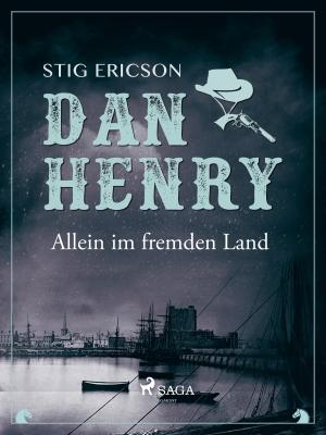 Dan Henry - Allein im fremden Land