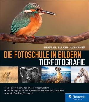Die Fotoschule in Bildern - Tierfotografie