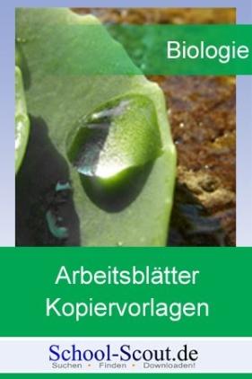 Arbeitsblätter und Kopiervorlagen für die Sekundarstufe im Fach Biologie: Die Zelle - Einführung in die Cytologie