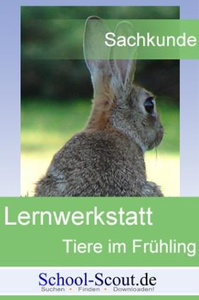 Lernwerkstatt: Tiere im Frühling: Der Feldhase verliert sein Winterfell