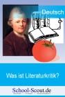 Was ist Literaturkritik? - Historische Entstehung und Entwicklungen in der Gegenwart