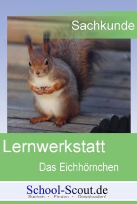 Lernwerkstatt: Das Eichhörnchen