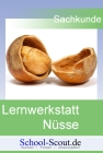 Lernwerkstatt: Nüsse