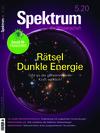 Spektrum der Wissenschaft (05/2020)
