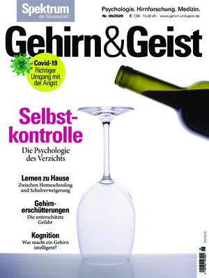 Gehirn & Geist (06/2020)