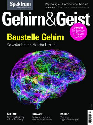 Gehirn & Geist (09/2020)