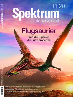 Spektrum der Wissenschaft (11/2020)
