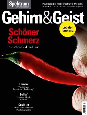 Gehirn & Geist (12/2020)