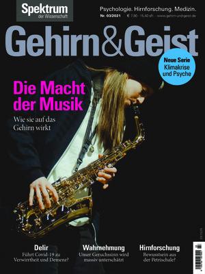 Gehirn & Geist (03/2021)