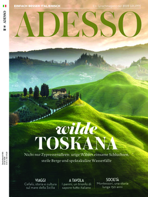 ADESSO (11/2020)