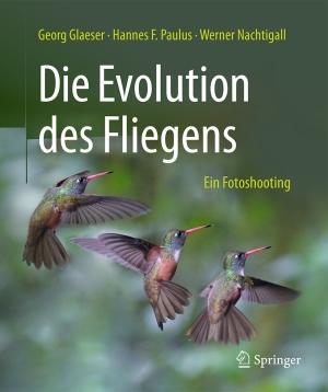 Die Evolution des Fliegens - ein Fotoshooting