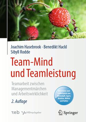 Team-Mind und Teamleistung
