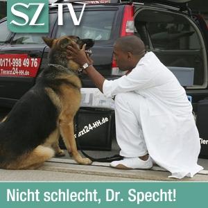Unser Tierarzt Dr. Specht