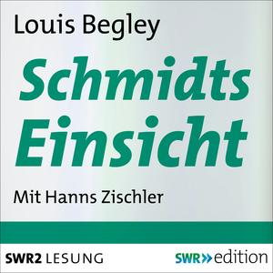 Schmidts Einsicht
