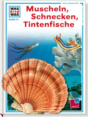 Muscheln, Schnecken,Tintenfische