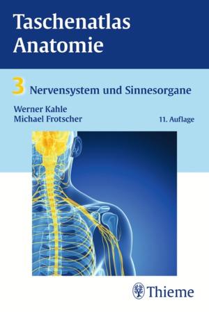 Taschenatlas Anatomie, Bd. 3