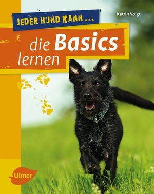 Jeder Hund kann ... die Basics lernen