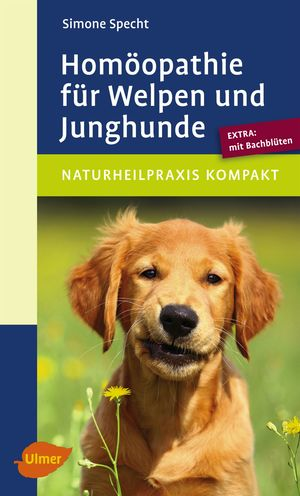 Homöopathie für Welpen und Junghunde