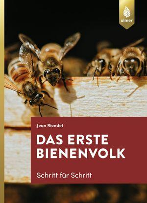 ¬Das¬ erste Bienenvolk