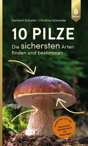 10 Pilze
