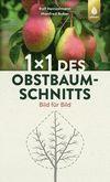 1 x 1 des Obstbaumschnitts