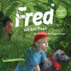 Fred bei den Maya