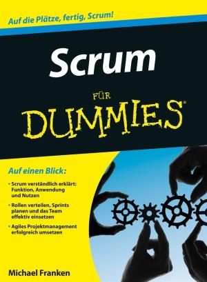Scrum für Dummies
