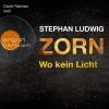 "David Nathan liest Stephan Ludwig ""Zorn - Wo kein Licht"""