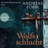 "Vergrößerte Darstellung Cover: Michael Schwarzmaier liest Andreas Föhr ""Wolfsschlucht"". Externe Website (neues Fenster)"
