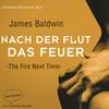 Christian Brückner liest Nach der Flut das Feuer, James Baldwin