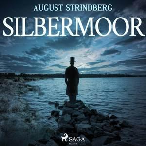 ¬Das¬ Silbermoor
