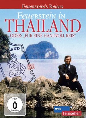 Feuerstein in Thailand