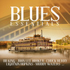 Vergrößerte Darstellung Cover: Blues essentials. Externe Website (neues Fenster)