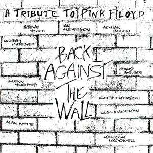 A tribute to Pink Floyd - back against the wall