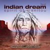 Indian dream - spirit of manitou