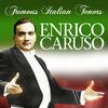 Vergrößerte Darstellung Cover: Famous Italian tenors. Externe Website (neues Fenster)