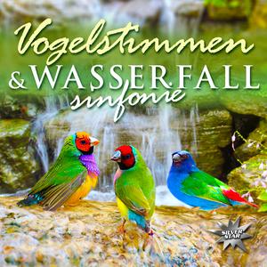 Vogelstimmen & Wasserfallsinfonie